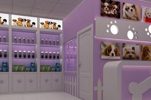 2018年宠物店优秀电梯广告投放案例分析